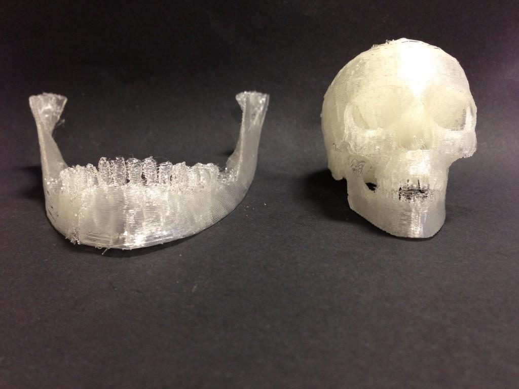 Bone Replicas