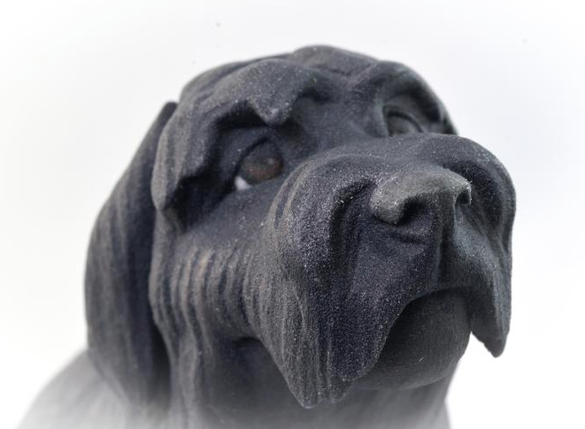 This Company 3D Prints Your Pets