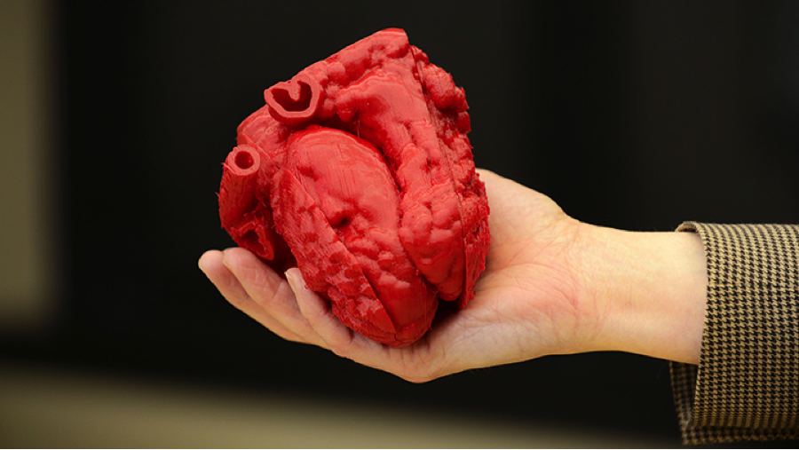 Heart Tissue Recovery