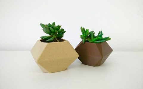 3D Printed Flower Pot