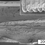 MIT Researchers Cellulose 3D Printing Bio Printing Materials