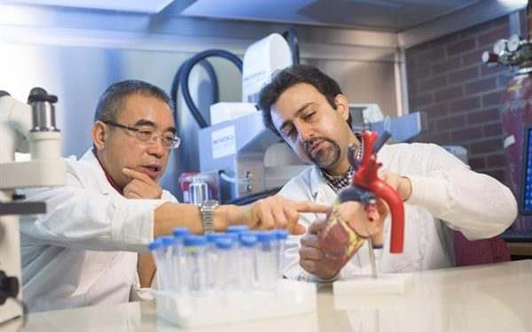 Researchers Bioprint Stem Cell Patch For Treating Heart Disease