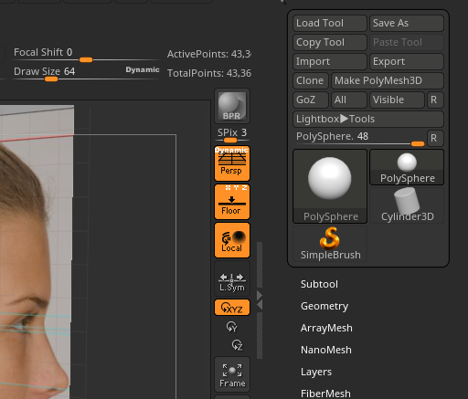 Zbrush dynamic perspective and floor XYZ