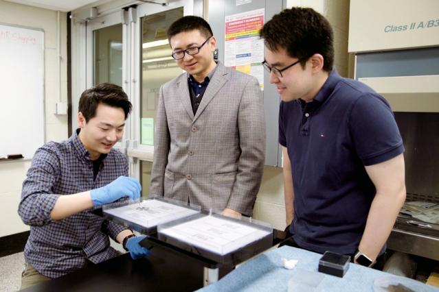 MIT Magnetic Organisms Print
