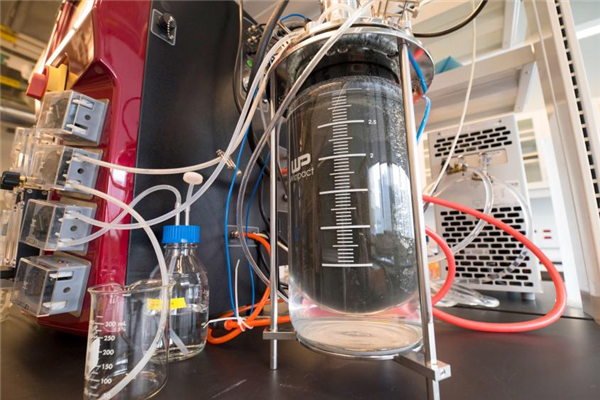 Genecis Turns Food Waste to Printable Bio-Plastic
