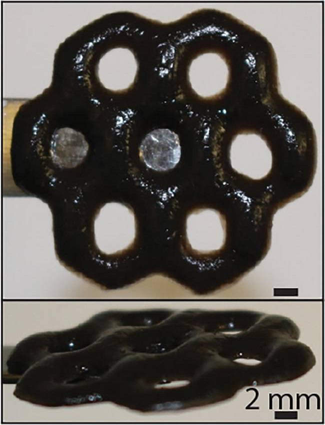Graphene Seaweed Composite Forms Prints Stronger Than Steel