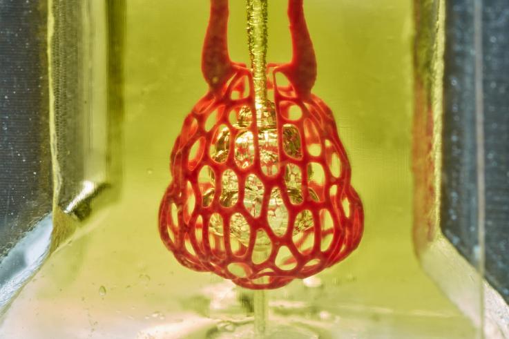 SLA Organ Printing Yields Results Using Food Dye