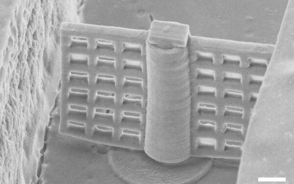 3D Printed Magnetic Microfilter Can Be Controlled Remotely